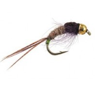 Ales TG Green Tailed Friend - 1