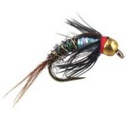 Ales TG Rainbow Pheasant - 1
