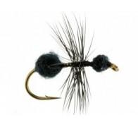 ant black fur - 1