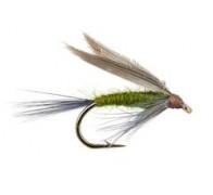 BlueJ ungle - 1