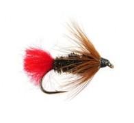 Brown Hackle Peacock - 1