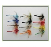 12 Coloured Dragon Fly Damsel - 1
