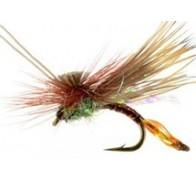 AC Caddis Pheasant Tail - 1