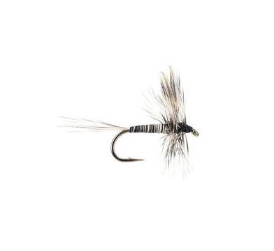 Mosquito - 1